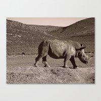 Rhino & Ostrich Canvas Print
