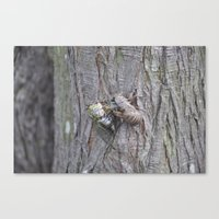new wings Canvas Print