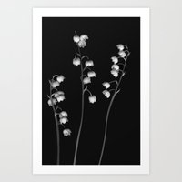 Lily of the Valley Noir Art Print