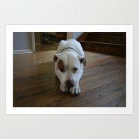 Dawg: 2 Art Print