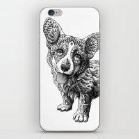 Corgi Puppy iPhone & iPod Skin