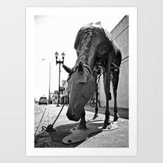 Urban horse Art Print
