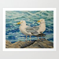 Gull Pair Art Print
