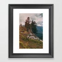 Northwest Forest Framed Art Print