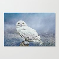 Snowy Owl In Mist Canvas Print