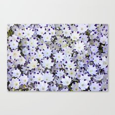 Flower carpet Canvas Print