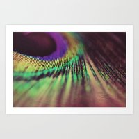 Peacock feather macro Art Print