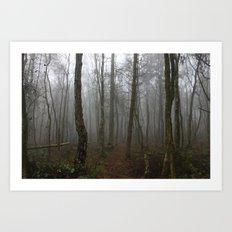 Foggy Woods Art Print