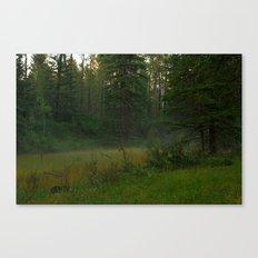 Magical mist Canvas Print