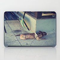 Dog Days Of Summer iPad Case