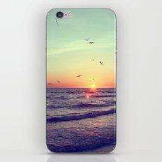 Siesta Key Sunset iPhone & iPod Skin