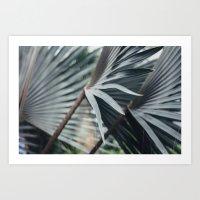 Palm Abstract Art Print