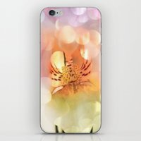 Pretty  Dreams iPhone & iPod Skin