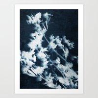 Botanical Series I Art Print