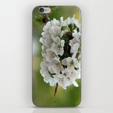 Cluster Fuhlowers. iPhone & iPod Skin