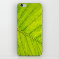 Tropical Leaf Vein Abstr… iPhone & iPod Skin