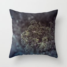As the summer ends 2 Throw Pillow