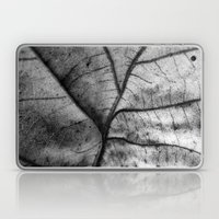 'Nature Network' Laptop & iPad Skin