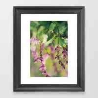lillacs Framed Art Print
