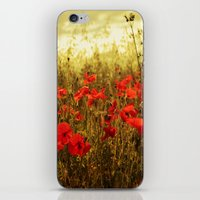 Poppy Glow iPhone & iPod Skin