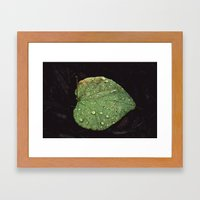Illuminate. Framed Art Print