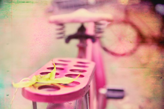 I Rode My Bicycle Past Your Window Last Night Art Print
