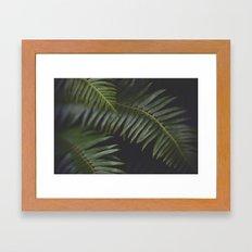 Woodland Ferns Framed Art Print