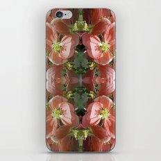 Flowers and more flowers iPhone & iPod Skin