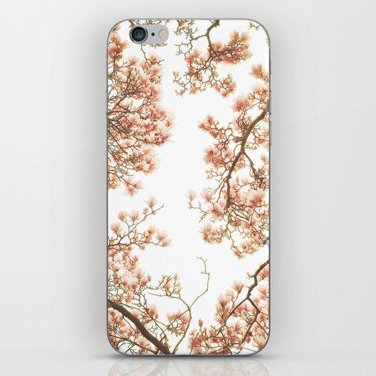 Magnolia Tree Looking Up iPhone & iPod Skin