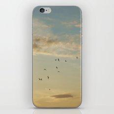 In Flight #7 iPhone & iPod Skin