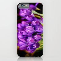 The Crocus Family  iPhone 6 Slim Case