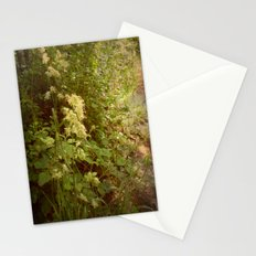 Beautiful Grasses. Stationery Cards