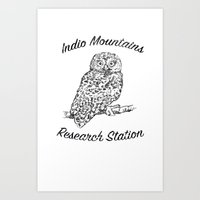 Indio Mountains Research Station - Elf Owl Art Print