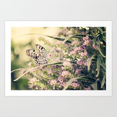 Summer Dreams Art Print