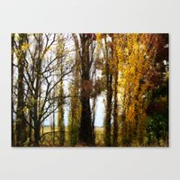 Golden Age Canvas Print