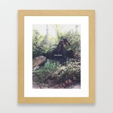 Stay Rooted Framed Art Print