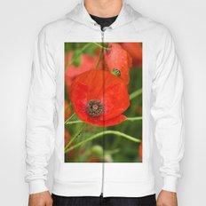Wild Red Poppies Hoody