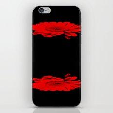 The gerbera  iPhone & iPod Skin