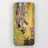 beach log iPhone & iPod Skin