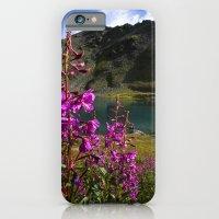 Fireweed - Hatcher Pass Alaska iPhone 6 Slim Case