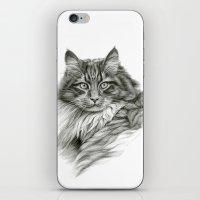 Ginger Cat G2012-052 iPhone & iPod Skin