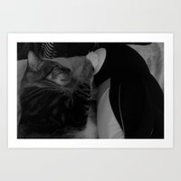 Love between cat and penguin  Art Print