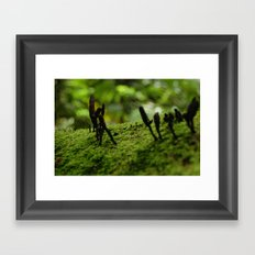 Hongos Framed Art Print