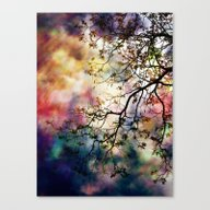 The Tree Of Many Colors Canvas Print