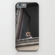 take me with you _ Beagle in a window iPhone 6s Slim Case