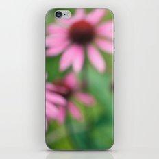 Echinacea iPhone & iPod Skin