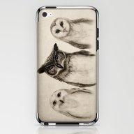 The Owl's 3 iPhone & iPod Skin