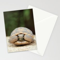 Family Portrait Stationery Cards