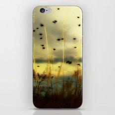 Bird Sunset iPhone & iPod Skin