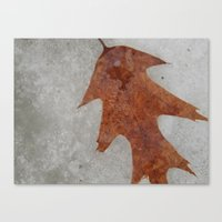 Oak Leaf On Ice Canvas Print
